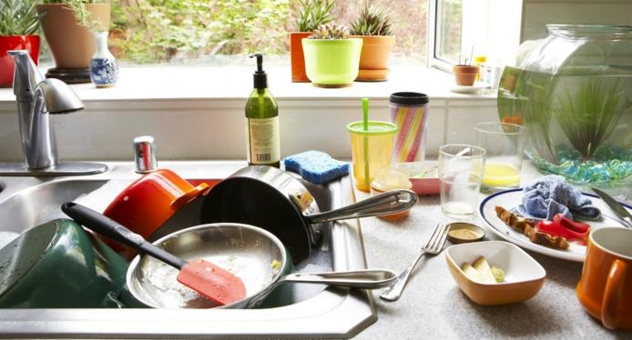 Как избавиться от тараканов в квартире навсегда, в общежитии, в доме