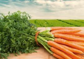 10 способов сохранить морковь на зиму
