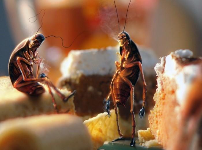 тараканы в еде