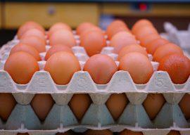 Сколько можно хранить яйца в холодильнике — срок хранения