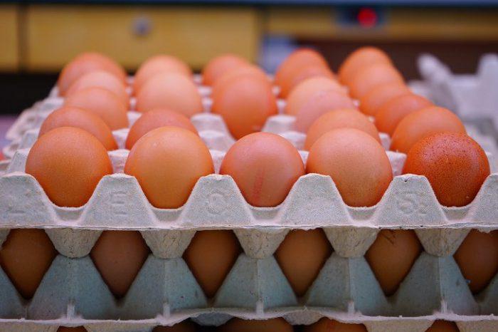 сколько можно хранить яйца