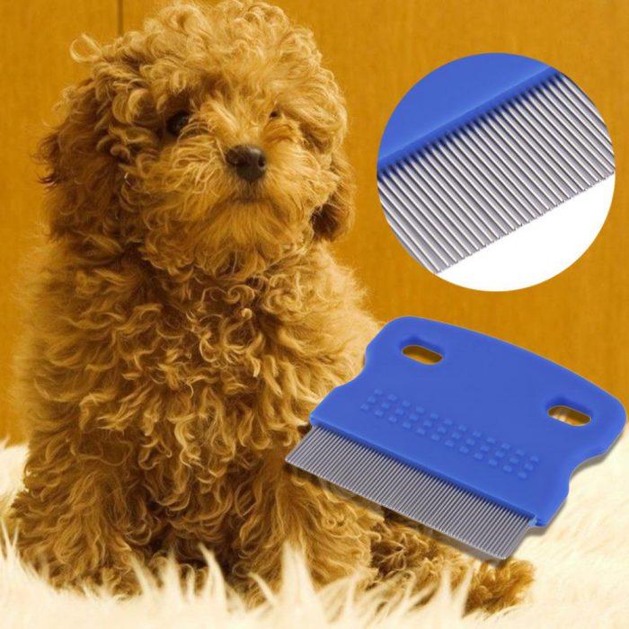 Щетка и вычесывание помогут от блох у собак