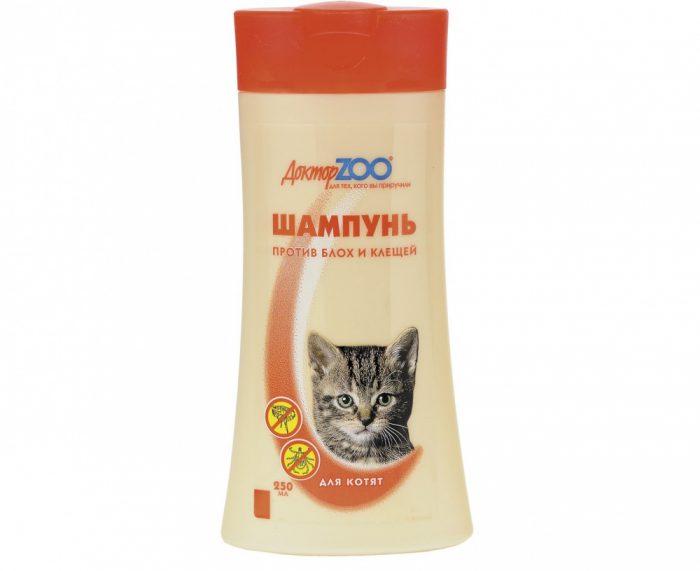 шампунь от блох для котят