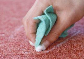 Как вывести запах кошачьей мочи с дивана и других поверхностей?