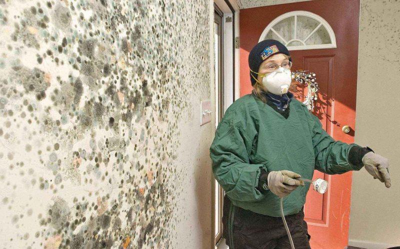 Меры безопасности во время обработки стен от плесени
