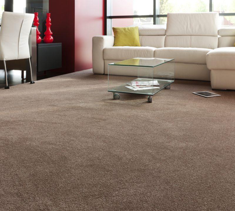 Как почистить ковролин в домашних условиях - способы эффективной чистки