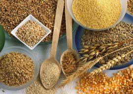 Моль пищевая: как избавиться от вредителя